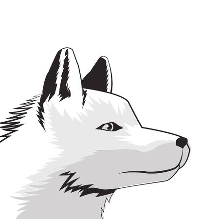 flat design wolf drawing icon vector illustration