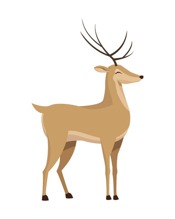 flat design single reindeer icon vector illustration