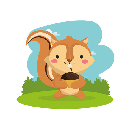 woodland: Woodland animal concept represented by cute squirrel cartoon icon. Colorfull and flat illustration. Illustration