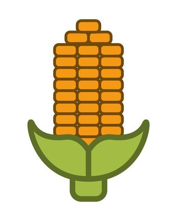 corn on the cob: flat design corn cob icon vector illustration