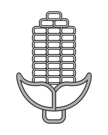 sweetcorn: flat design corn cob icon vector illustration