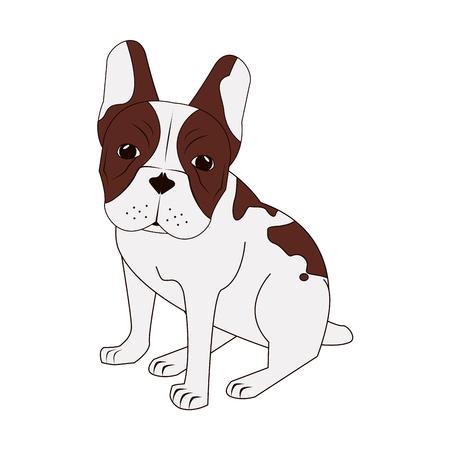 bullmastiff: flat design french bulldog icon vector illustration