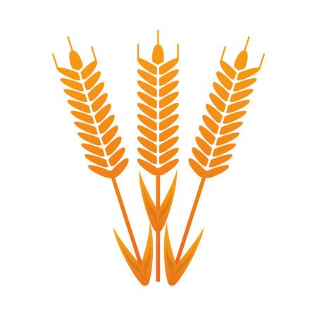 flat design wheat ear icon vector illustration