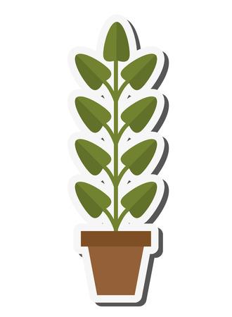 flat design plant in pot icon vector illustration