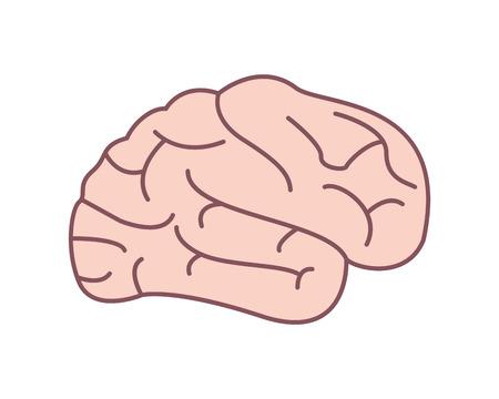 flat design human head icon vector illustration