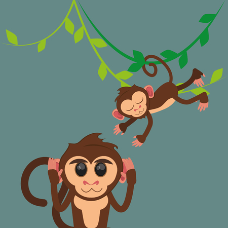 flat design happy playful  jungle monkeys hanging cartoon vector illustration Illustration