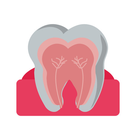 Tooth icon. Dental medical and health care theme. Isolated design. Vector illustration Illustration