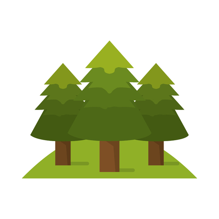 wilderness area: Pine trees icon. Plant nature and forest theme. Isolated design. Vector illustration