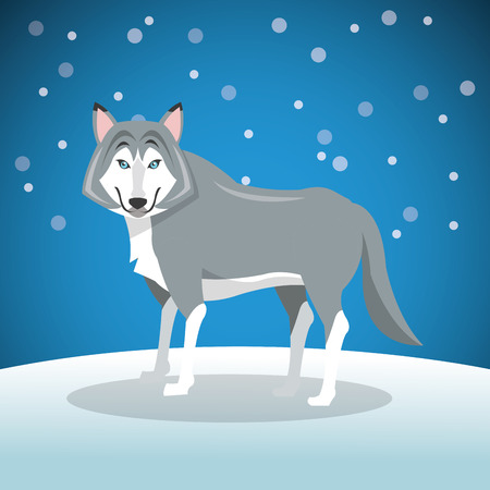 dreadful: wolf over background image vector illustration design