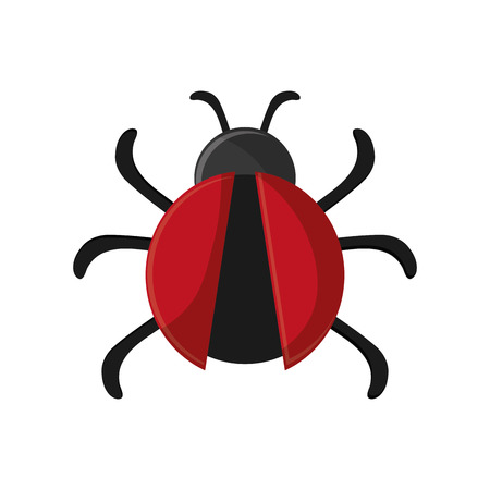 infestation: Bug icon. Insect pest bed and internet theme. Isolated design. Vector illustration