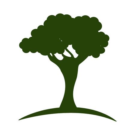 shallow: tree green nature icon vector illustration graphic design