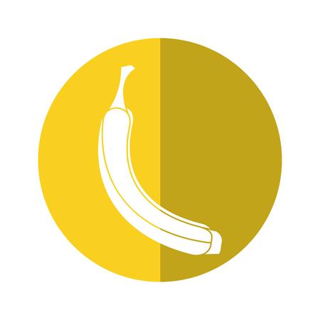 appetizing: banana appetizing fruit nature yellow circle shadow vector illustration