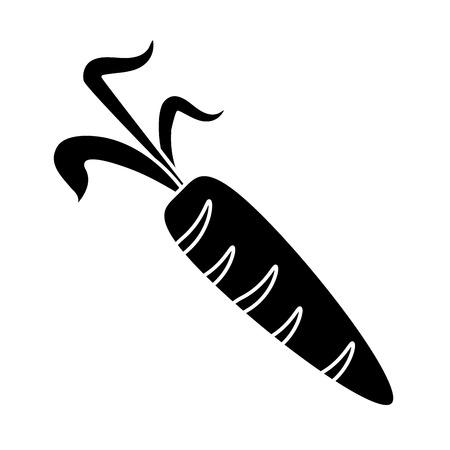 pictogram fresh carrot vegetable healthy icon vector illustration