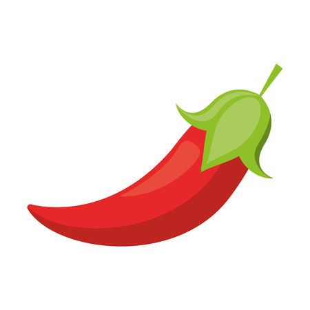 red chili pepper culinary food Illustration