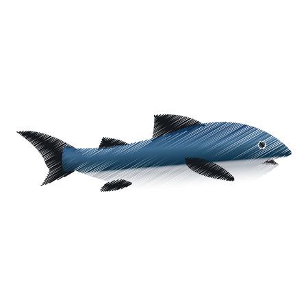 ecosystem: Icono de peces. Sea la fauna de los ecosistemas y la vida tema del océano. diseño aislado. ilustración vectorial