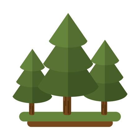 evergreen tree: canadian evergreen tree pine vector illustration eps 10