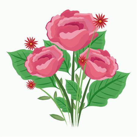 rose bouquet: pink roses bunch floral decorative vector illustration Illustration