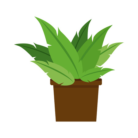 plant in pot: plant pot decoration office nature vector illustration eps 10 Illustration