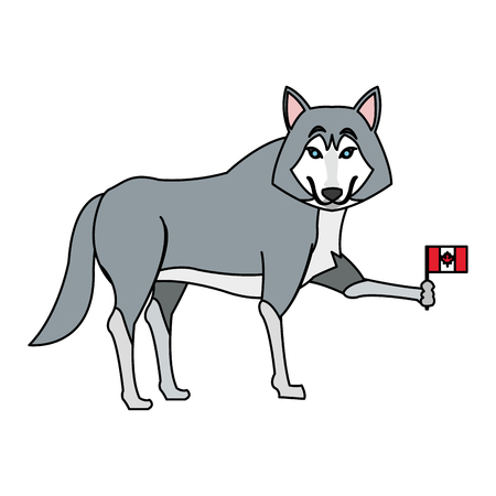 wolf cartoon with flag of canada over white background. colorful design. vector illustration