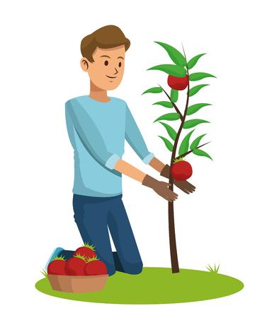 tomato plant: guy with gloves care tomato plant pot vector illustration Illustration