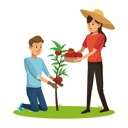 couple picked tomato tree basket vector illustration eps 10
