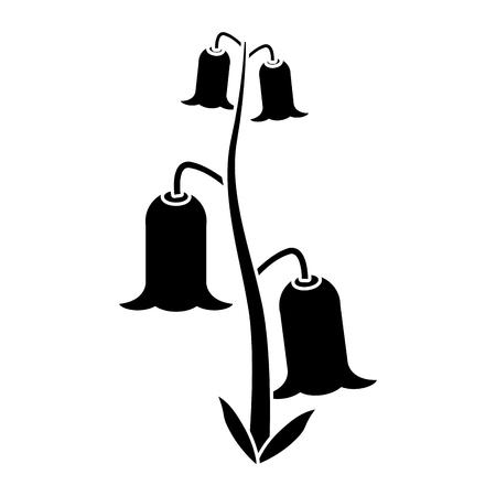 campanula: bell flowers flora botany pictogram