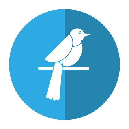 pigeon owl: bird dove fauna fly shadow