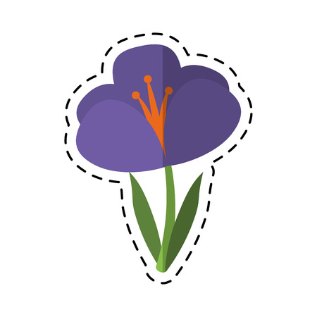 cartoon crocus plant spring floral icon