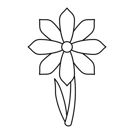 gerbera flower spring ornament thin line