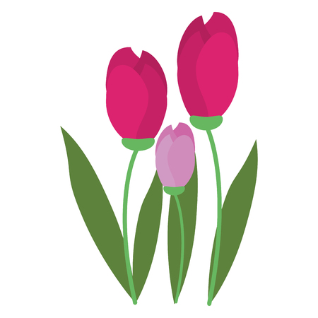 bunch: tulip bunch natural floral Illustration