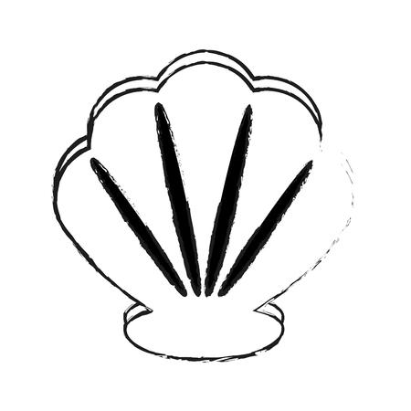 sea shell icon image vector illustration design