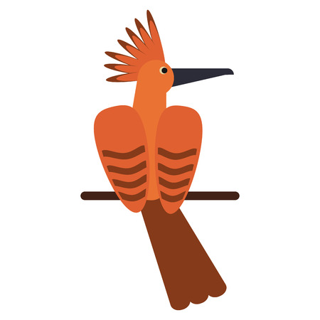 hoopoe bird exotic icon vector illustration eps 10