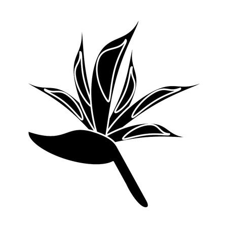 bird of paradise flower pictogram