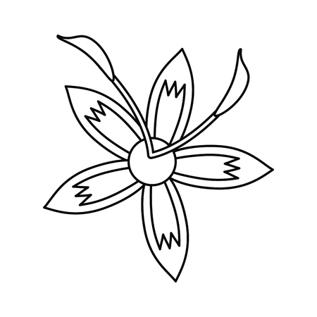 flower lily beautiful flora thin line vector illustration Illustration