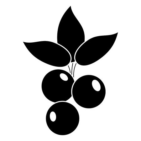 blueberry leaves diet pictogram vector illustration eps 10