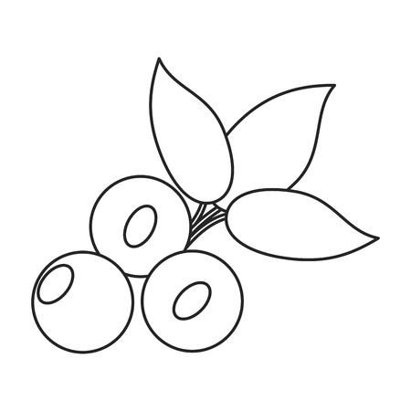 blueberry leaves diet thin line vector illustration