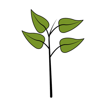 vegetate: green leaf icon image vector illustration design