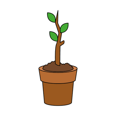 vegetate: plant sprout in pot icon image vector illustration design