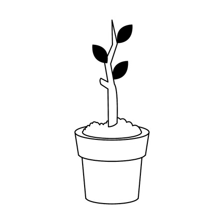 plant in a pot over white background. vecotr illustration