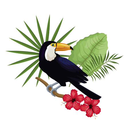 toucan hibiscus branch palm leaves vector illustration Illustration