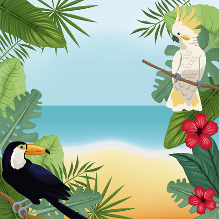 cockatoo and toucan leaves tropical beach