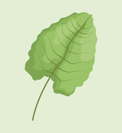 leave palm tropical natural vector illustration eps 10 Illustration