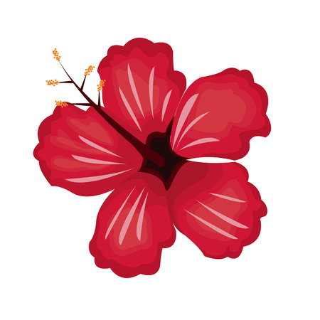 allover: hibiscus flower exotic nature vector illustration eps 10