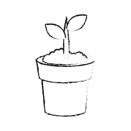 plant in pot icon image vector illustration design