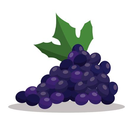 grape nutrition healthy image vector illustration eps 10