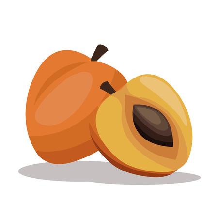 apricot nutrition diet image vector illustration eps 10 Illustration