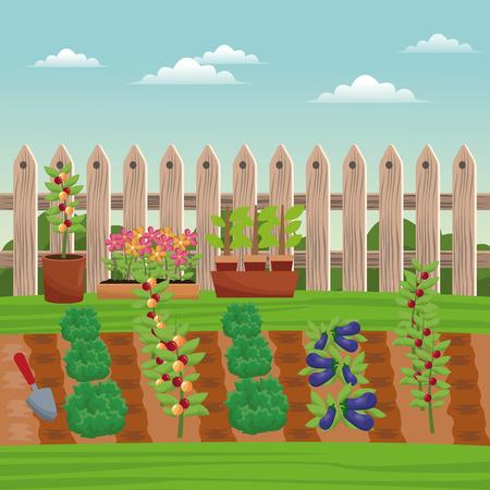 vegetable field farm fence vector illustration