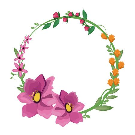 flower anemone crown decoration vector illustration