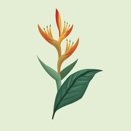 leave palm tropical natural vector illustration