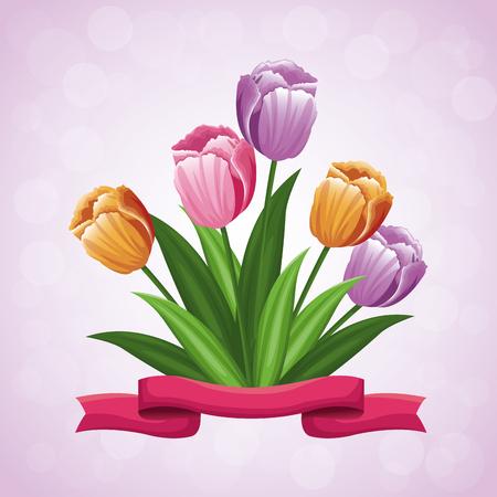 beauty tulips flower ribbon ornament vector illustration eps 10